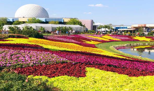 The Wonderful Epcot International Flower & Garden Festival