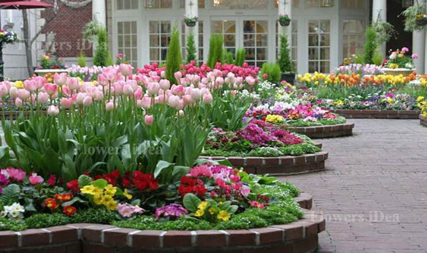 Flower Bed At the Entrance