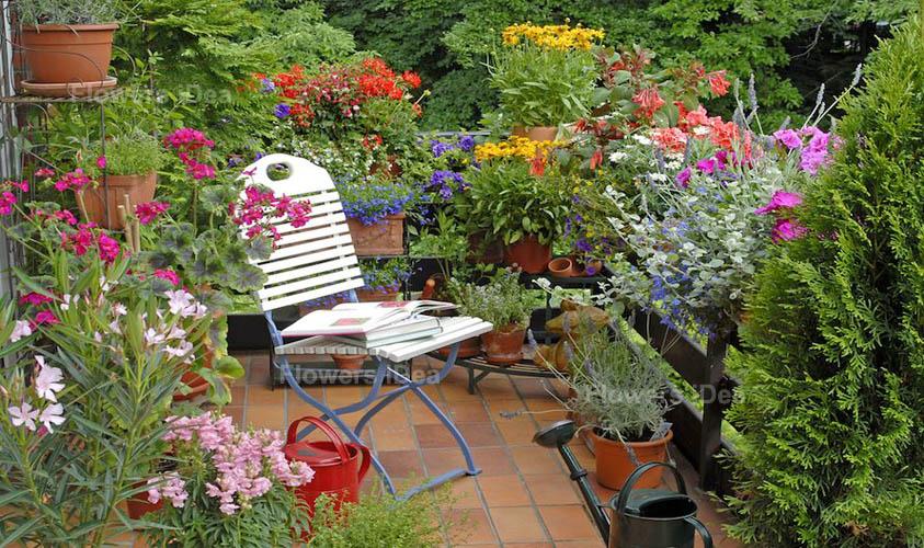A Patio or Balcony Flower Garden Ideas