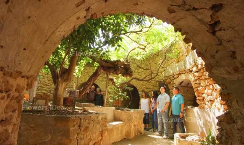 Forestiere Underground Botanical Gardens