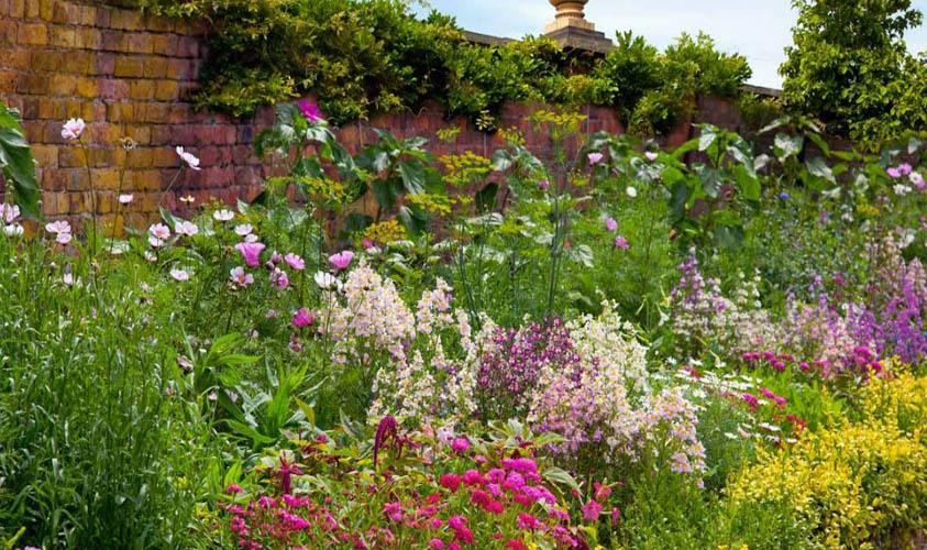Great Perennials for a Small Flower Garden Ideas