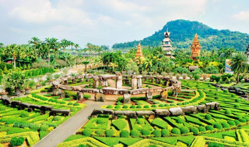 NongNooch Pattaya Flowers Gardens