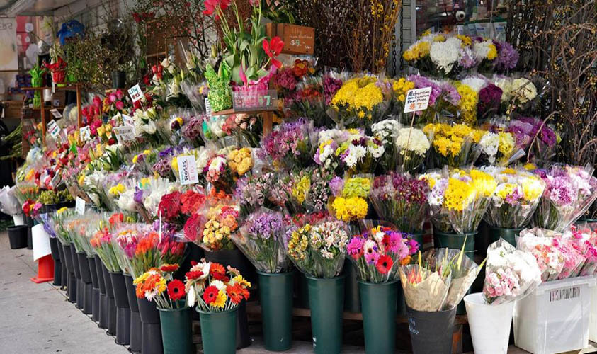 Higher Selling Flowers in USA